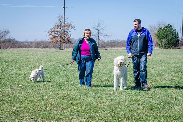 Training Is Based In Olathe KSWe Serve The Johnson County Area We Love Pet